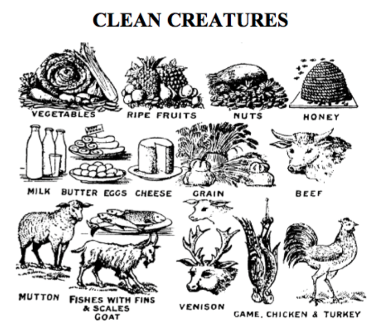 Image result for clean and unclean animals leviticus